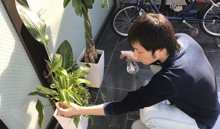 OFFICE GEKKOUカウンセラーのブログ画像